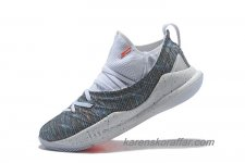 Herr Under Armour Curry 5 Vit/Grå skor